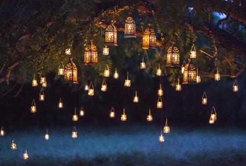 Best Diwali Light