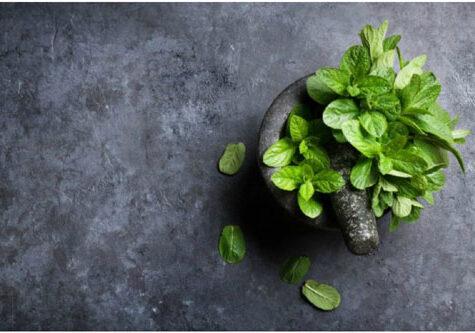 Best Selling Breath Fresheners in India